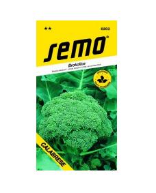 Brokolica Calabrese